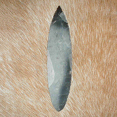Long Solutrean spearhead