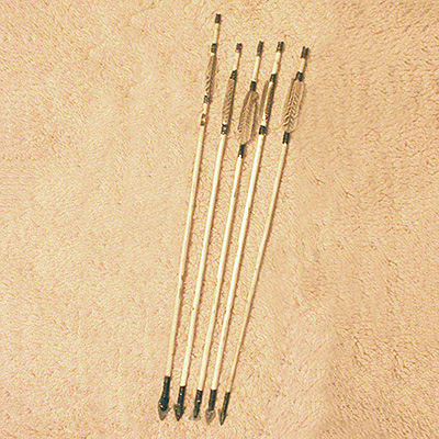PT008-arrow-fletched-set