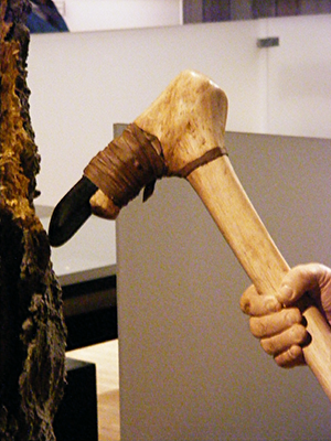 Wooden axe/adze handle